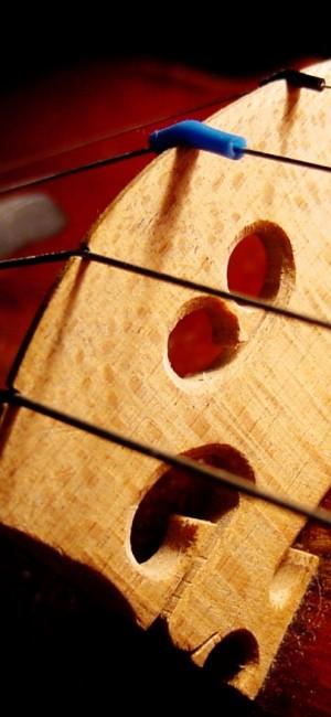 violon2
